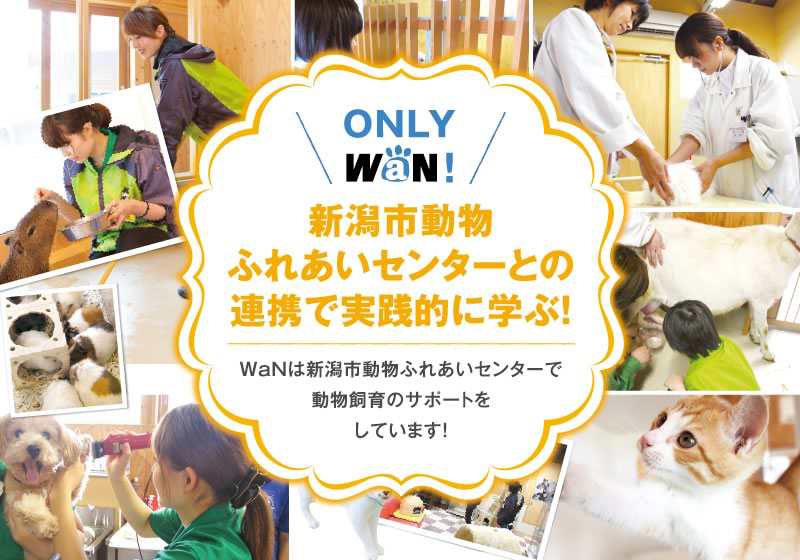 新潟市動物ふれあいセンターとの連携で実践的に学ぶ!