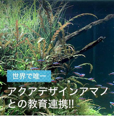 アクアデザインアマノとの教育連携!!
